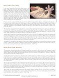 Amazing Animals - Page 6