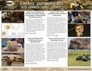2013 Forensic Anthropology Short Course Flyer [pdf] - Mercyhurst ...
