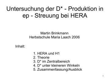 E-11 B Hamburg Martin Brinkmann DESY Untersuchung der D