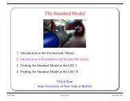 The Standard Model - Herbstschule Maria Laach
