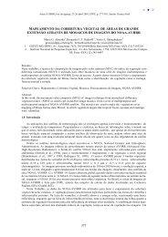 005 - MAPEAMENTO DA COBERTURA VEGETAL DE ÁREAS ... - Inpe