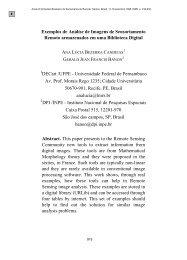 Exemplos de Análise de Imagens de Sensoriamento Remoto ... - Inpe