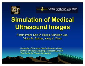 Simulation of Medical Ultrasound Images Utilizing Visible Human ...