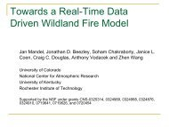 Towards a Real-Time Data Driven Wildland Fire Model