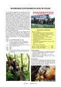REHBOCK 2012 - Page 6