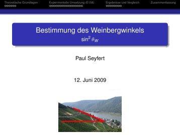 Bestimmung des Weinbergwinkels - Fachschaft MathPhys an der ...