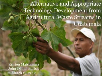 Alternative and Appropriate Technology Development from ...