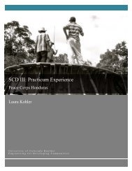 SCD III: Practicum Experience - Mortenson Center - University of ...