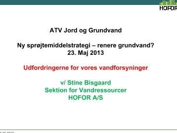 Stine Bisgaard - ATV Jord og Grundvand