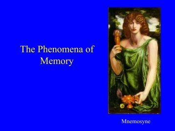 The Phenomena of Memory