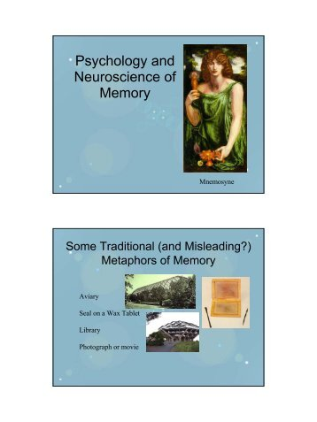 Psychology and Neuroscience of Memory