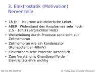 pdf, 112kb - Universität Oldenburg
