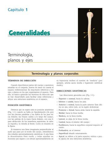 Generalidades - Axon