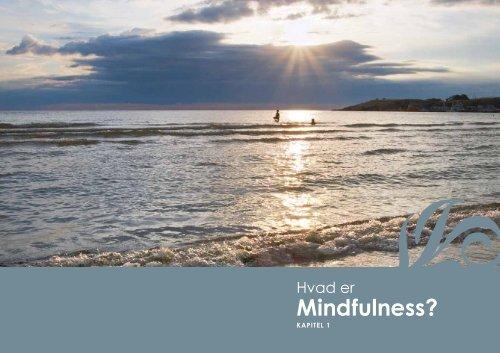 Download 1. kapitel fra bogen '7 lette veje til Mindfulness'