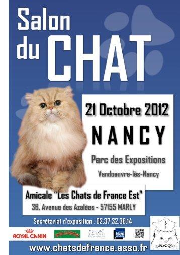 Speciale Chatons 3/6 mois - Association les Chats de France