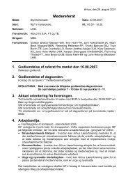 Referat fra den 23. august 2007