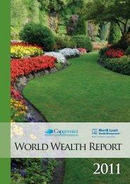 World Wealth Report 2011 - Merrill Lynch