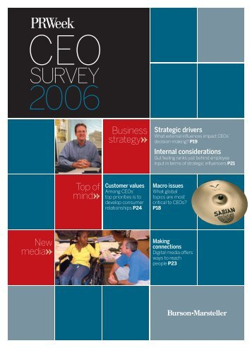 2006 CEO Survey - Haymarket Media Group