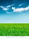 Abtrennung und Speicherung von CO2 - Seite 4