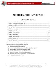 Module 2: The Interface - University of Houston