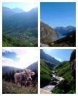 Wellness Walks i Schweiz - Page 2