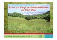 Schutz und Pflege der Wienerwaldwiesen der Stadt Wien