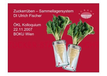 Sammellagersystem DI Ulrich Fischer ÖKL Kolloquium 22.11.2007 ...