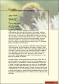 - tradition forskning - nikolajdesign.dk - Page 7