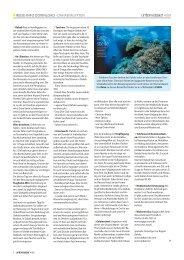p REISE-INFO DOWNLOAD · DAHAB/ÄGYPTEN u 4/09 - Unterwasser