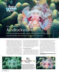 Ausdrucksstark - Unterwasser