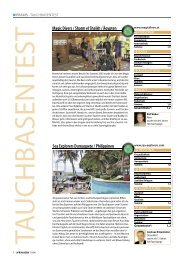Sea Explorers Dumaguete / Philippinen Magic Divers ... - Unterwasser