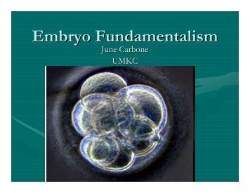 Embryo Fundamentalism