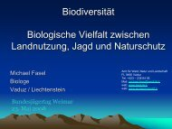 Die Jagd - Newsroom.de