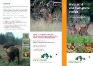 Wald, Wild und biologische Vielfalt - Newsroom.de