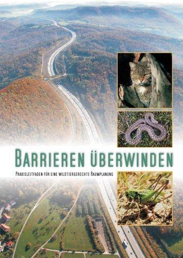Barrieren überwinden - Newsroom.de