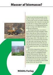 Masser af biomasse?