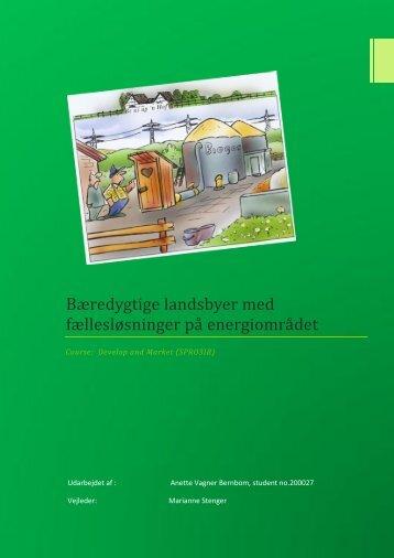 Bæredygtige landsbyer med fællesløsninger på energiområdet