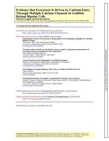 PDF Link - Creighton University
