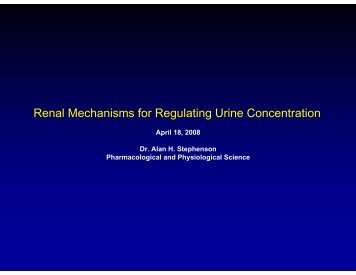 Renal Mechanisms for Regulating Urine Concentration