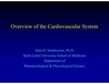 Overview of the Cardiovascular System - Saint Louis University ...