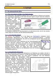 (6) Cytologie - member