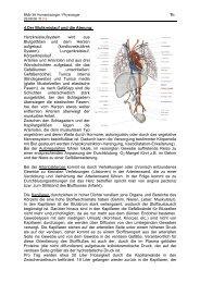 Herz-Kreislaufsystem - member