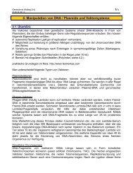(4) Manipulation von DNA / Plasmide & Vektoren - member