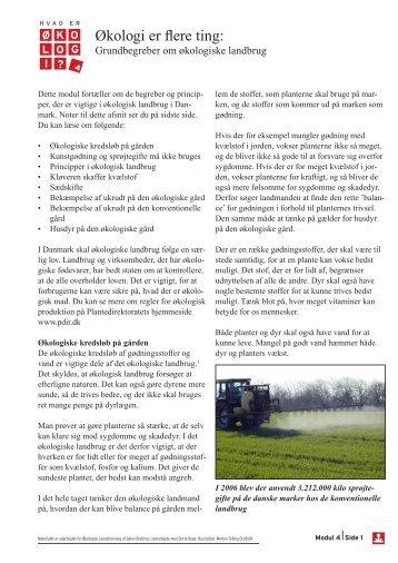 Grundbegreber om økologi og landbrug - Økologi i skolen