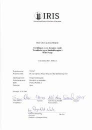 IRIS 2008-216.pdf