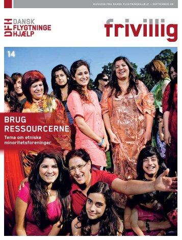 Frivillig 3 2009 - Integrationsviden