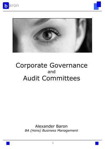 Corporate Governance Audit Committees