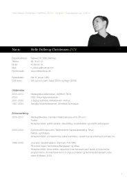 Curriculum Vitae - Helle Dollerup Christensen