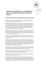 Vejledning til mulighedserklæring - Region Syddanmark