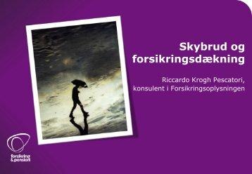 Skybrud og forsikringsdækning - Brønshøj-Husum lokaludvalg